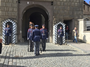 ceremonial rotation of soldiers