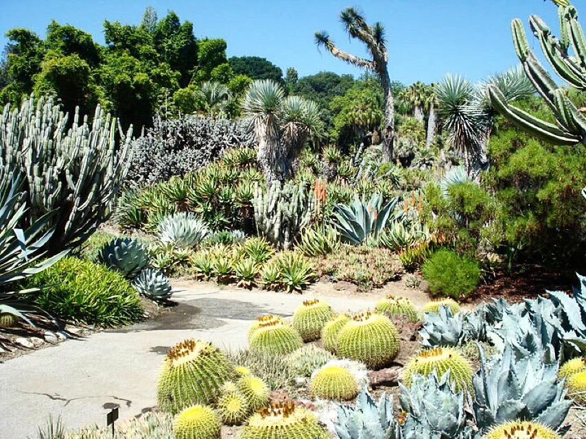 The Huntington Library Botanical Garden