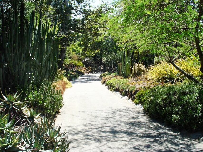 The Huntington Library Botanical Garden