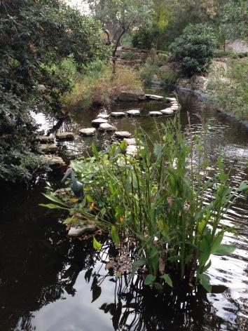 Austin Zilker Botanical Garden