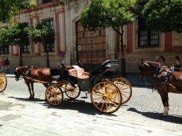 Old Town Seville