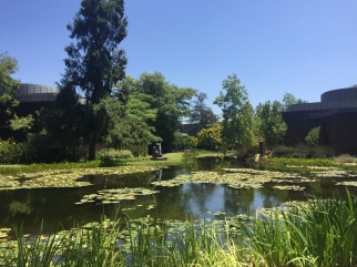 Norton Simon Museum Sculpture Garden