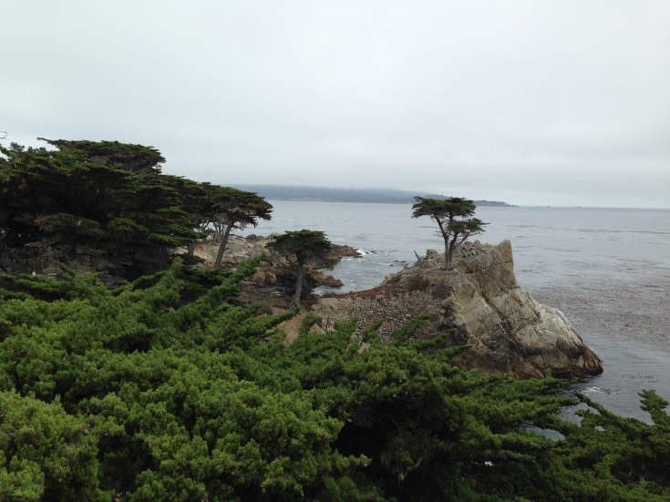 17 Mile Drive - The Lone Cypress
