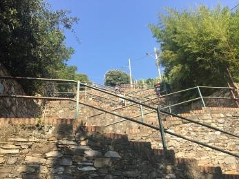 Cinque Terre Lardarinato stairs from Corniglia station to Village