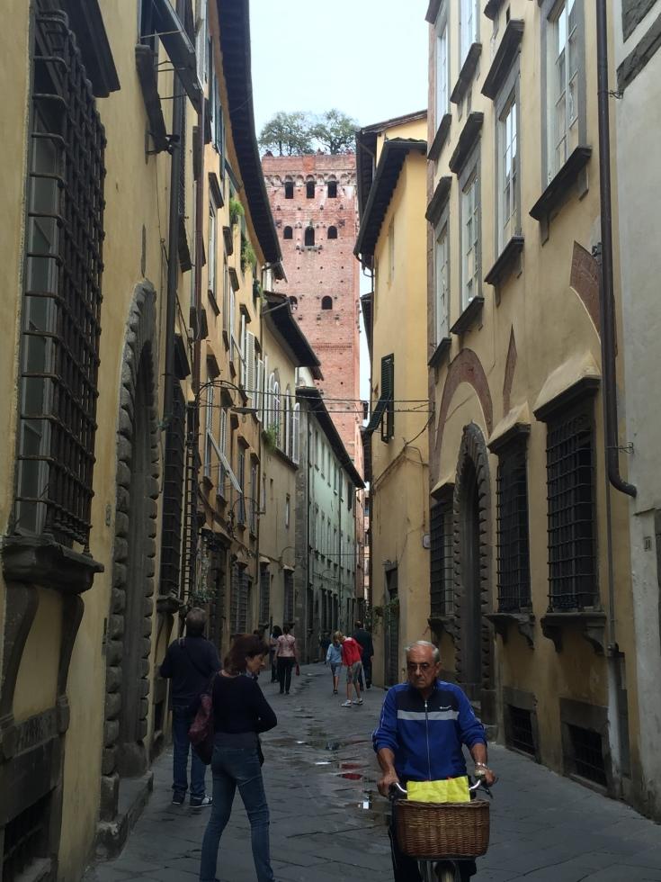Lucca El Torre Guinigi and the Sky Garden