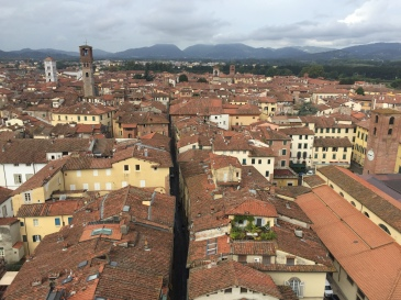 Lucca El Torre Guinigi
